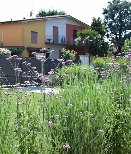Progettazione giardini agronomo paesaggista brescia for 2 500 m di progetti di case aperte