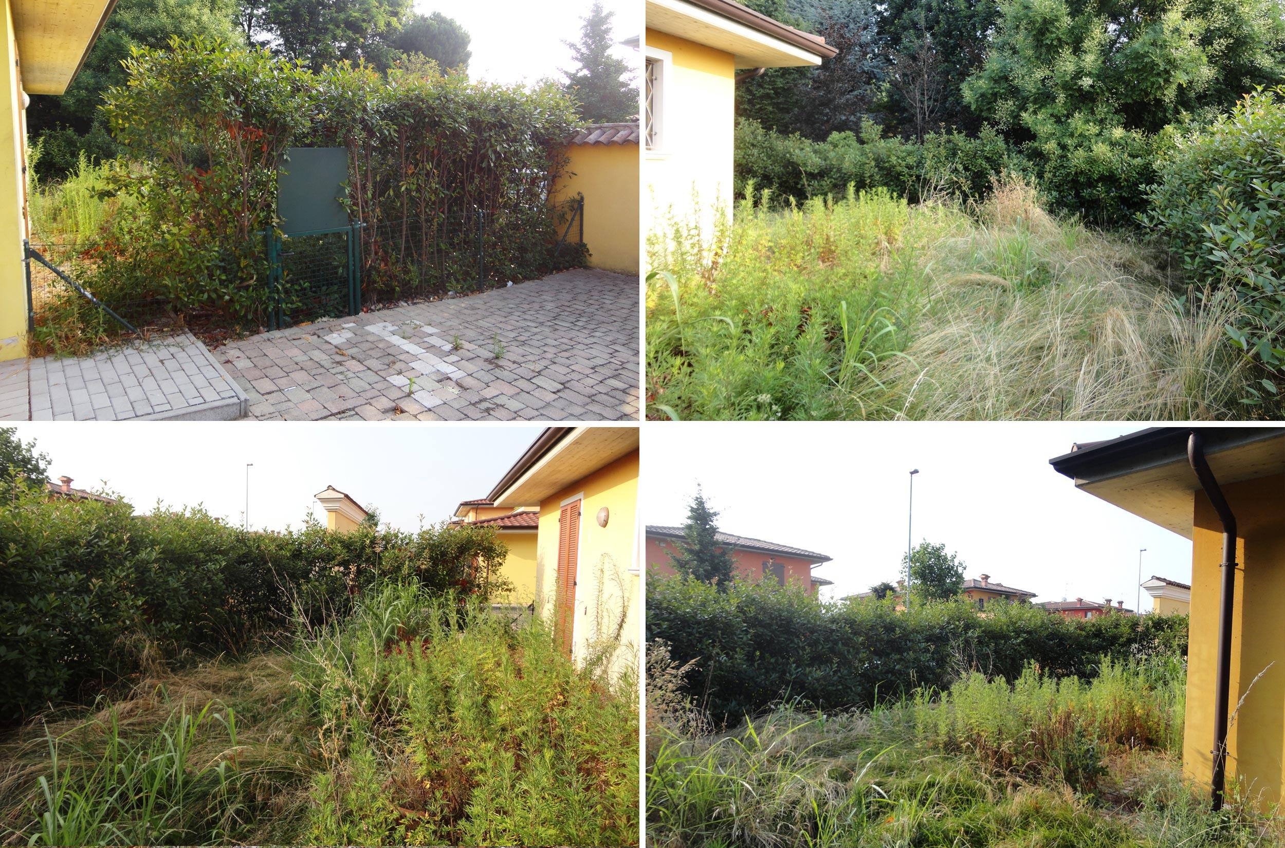 Progettare Un Giardino In Campagna il giardino inaspettato | progettazione giardini agronomo