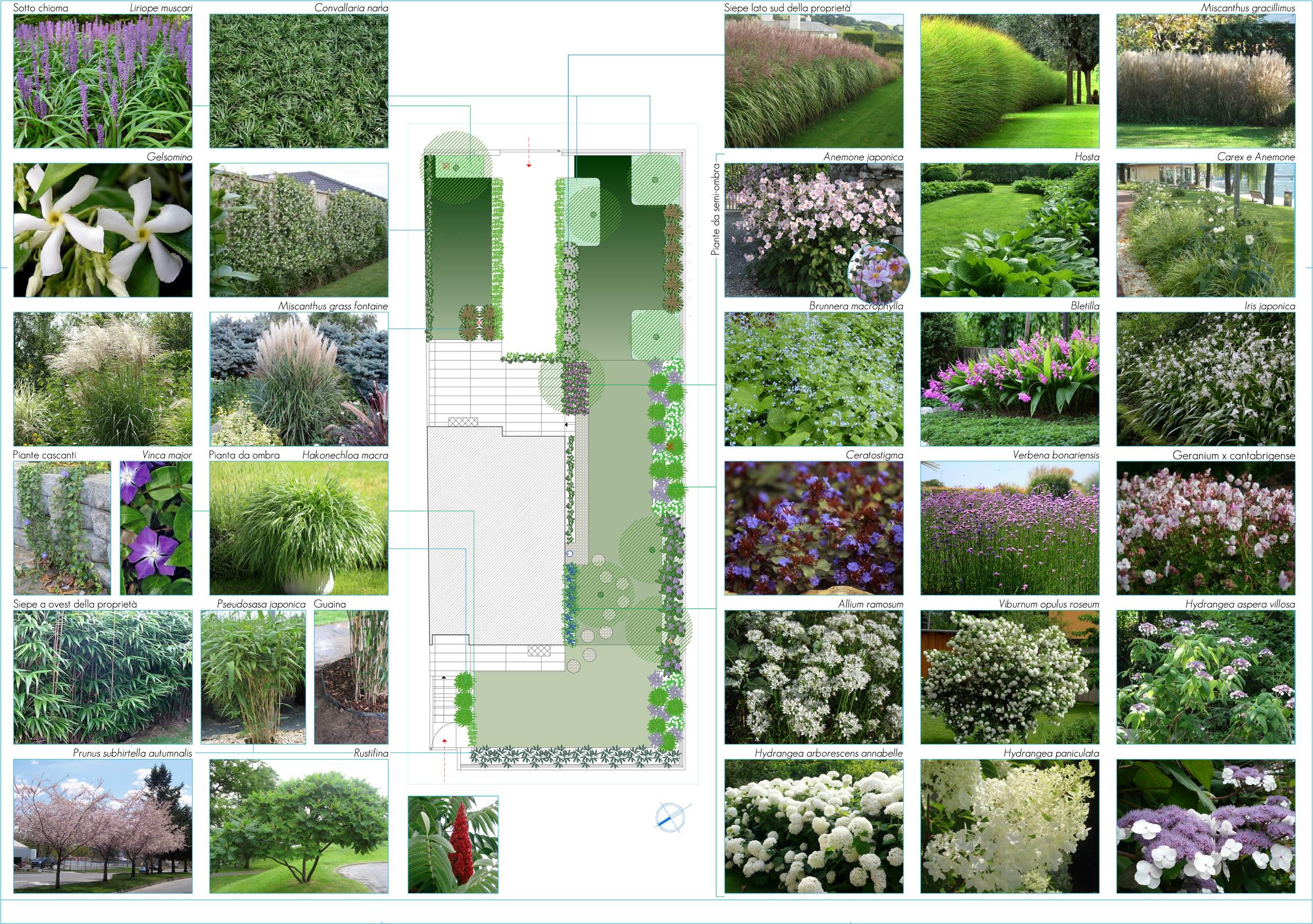 Giardino di abitazione privata leno bs progettazione for Corso progettazione giardini