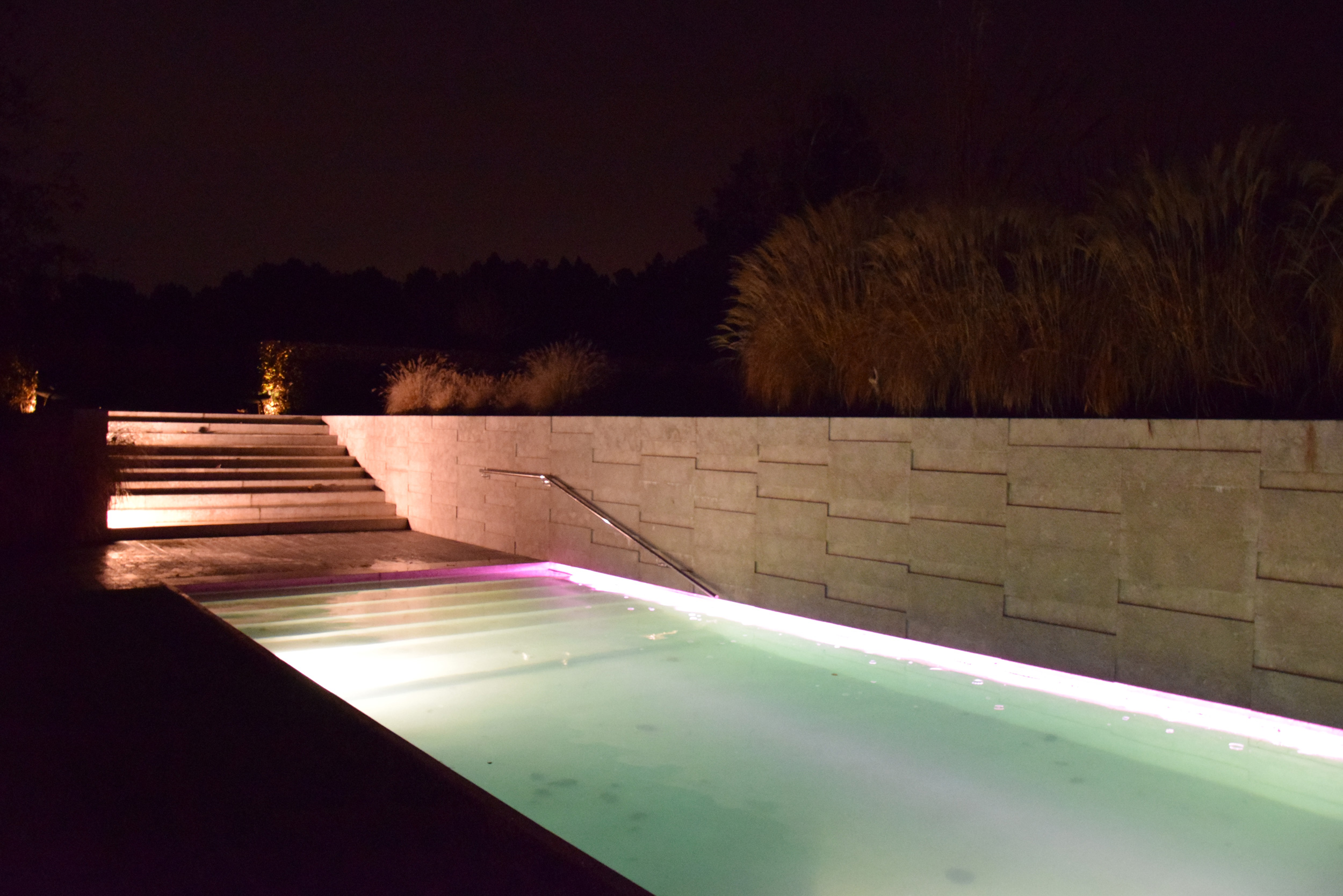 Pennisetum alopecuroides, giardino contemporaneo, graminacee, swimmingpool, lights, by night