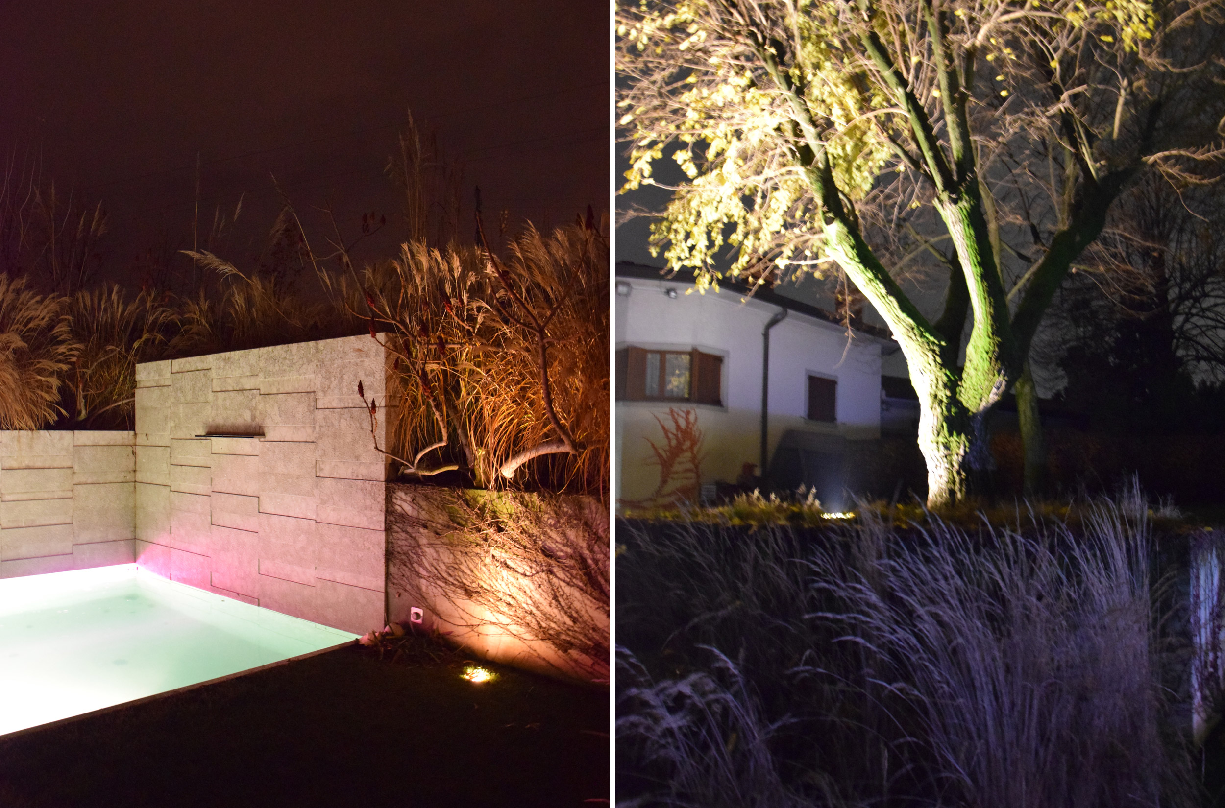Rhus typhina dissecta, giardino contemporaneo, graminacee, swimmingpool, lights, by night