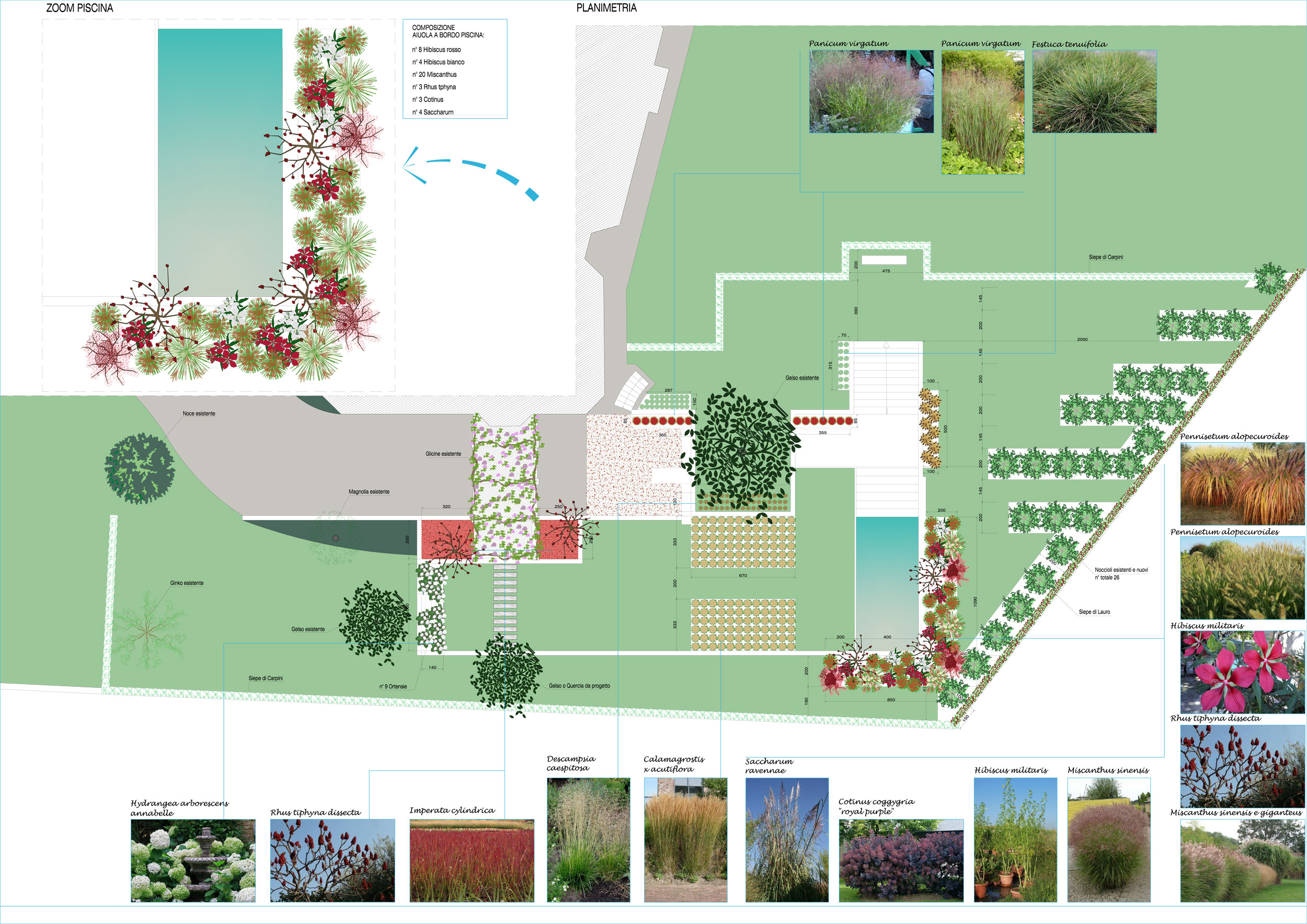 Doppio livello progettazione giardini agronomo for Disegno giardini