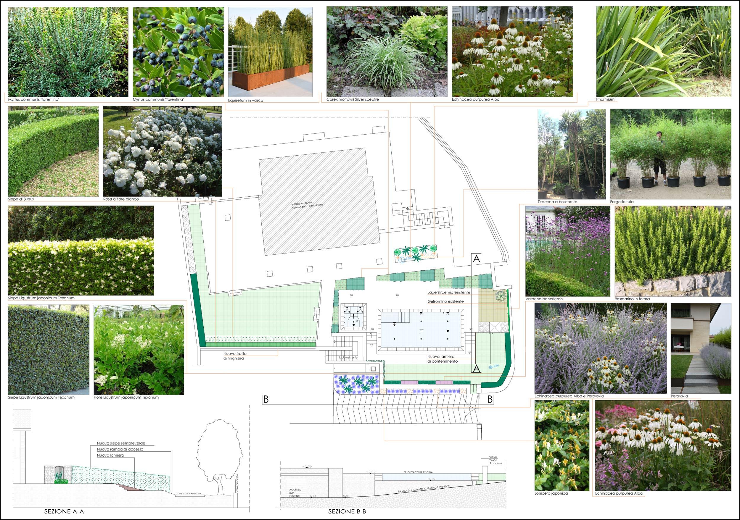 Progetti di giardini con piscina for Laghetto balneabile progetto