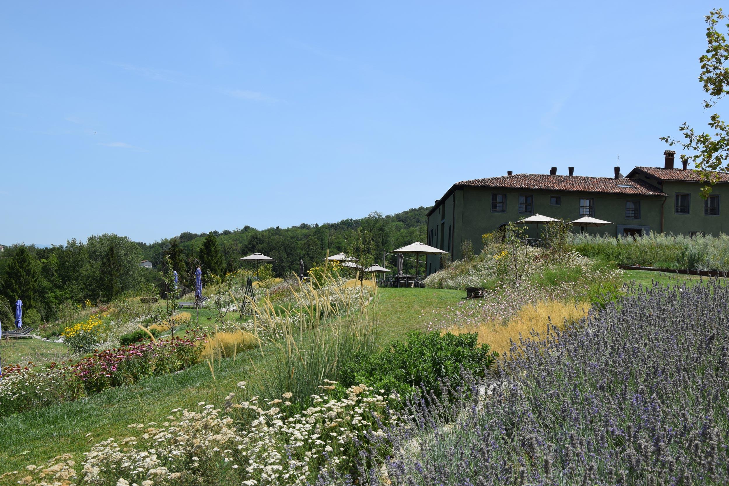 Un giardino tra i vigneti progettazione giardini for Corso progettazione giardini