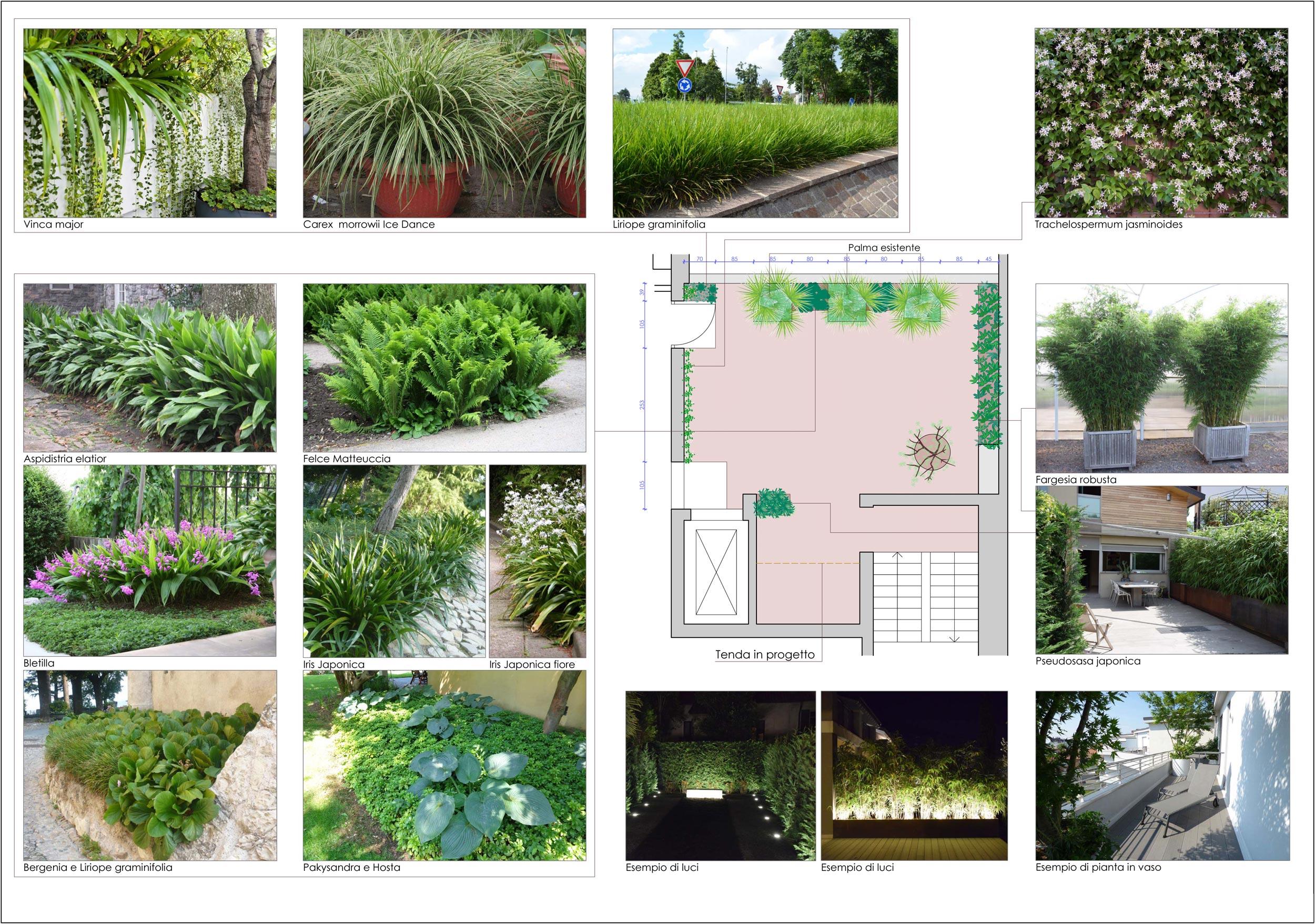 Progetti di giardini pubblici e aziendali in fase di for Progetti di costruzione commerciale gratuiti
